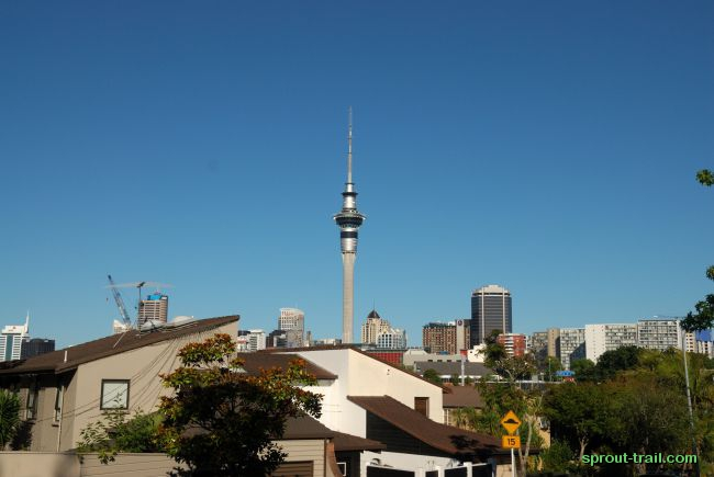 The Sky Tower, the tallest man-made structure in the Southern Hemisphere