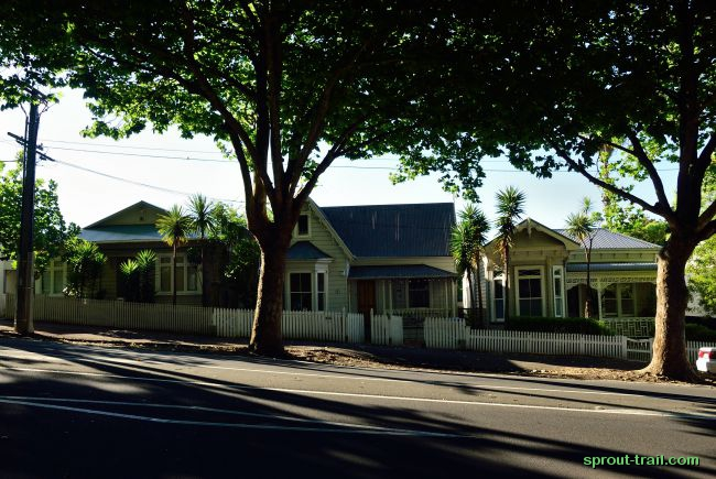 Popular wooden houses in the swanky suburb of Ponsonby