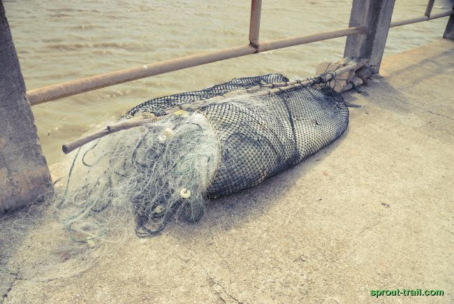 Whilst the community is dugong friendly, unfortunately fishing nets aren